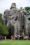 China: Stone Forest National Park Royalty Free Stock Images