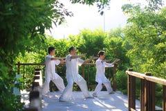 China tai chi health of martial arts. China tai chi martial arts fitness regimen Royalty Free Stock Images