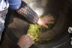 China, tea production process Royalty Free Stock Image