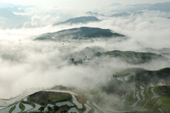 China-terassenförmig angelegte Felder Lizenzfreie Stockbilder
