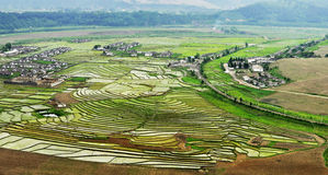 China terraces. In China's yunnan province terraces, people in growing food Royalty Free Stock Image
