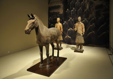 China Terracotta Warriors ,Museum Royalty Free Stock Images