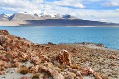 China, Tibet. Holy lake Chovo Co 4765 m in summer day stock photography
