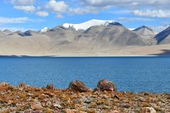 China, Tibet. Holy lake Chovo Co 4765 m in summer day stock image