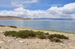 China, Tibet, holy lake Manasarovar.  royalty free stock images