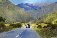 Álamos tremedores e estrada do outono Imagem de Stock Royalty Free