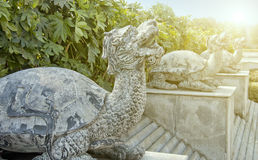 China turtle stone carving Stock Photo