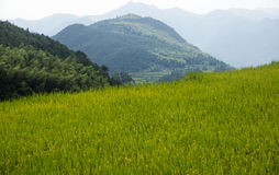 China Wenzhou landscape - mountain scenery. Shooting in China Zhejiang Wenzhou Zeya Royalty Free Stock Photos