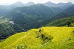 China Wenzhou landscape - mountain scenery. Shooting in China Zhejiang Wenzhou Zeya Royalty Free Stock Images