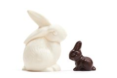 China white rabbit with small chocolate one Royalty Free Stock Photography