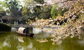 China Wuxi Shantou Cherry Blossom Festival imagens de stock royalty free