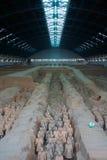 China/Xian: Guerreiros e cavalos do Terracotta fotografia de stock royalty free