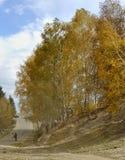 China/Xinjiang: otoño en hemu y algunas hojas de ruta (traveler) Fotos de archivo libres de regalías