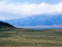 China/Xinjiang: Sailimu lake Stock Photography