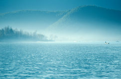 The China Yunnan morning Lugu Lake Stock Images