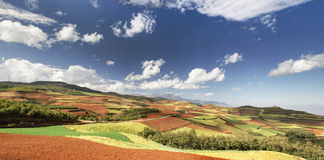 China Yunnan Red Land Stock Photo