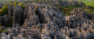 China Yunnan Stone Forest is the ancient topography Stock Photos
