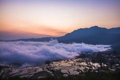 China Yunnan Yuanyangtitian mehr durch Baumlandschaft Stockfotos