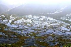 china09 hani taras Yunnan zdjęcia royalty free