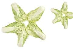 Chinakohlblätter liegen in einer Sternform stockfoto