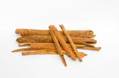 Chinamon. Cinnamon sticks isolated on white background Stock Images