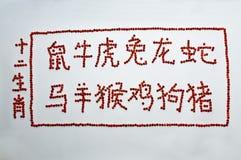 Chinas tolv kineszodiac Royaltyfria Bilder
