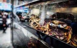 Chinatown, Μανχάταν, Νέα Υόρκη, Ηνωμένες Πολιτείες Στοκ εικόνα με δικαίωμα ελεύθερης χρήσης