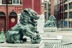 Chinatown - Chinese Leeuw D Stock Foto