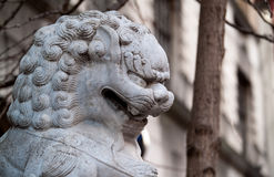 Chinatown lion Stock Image