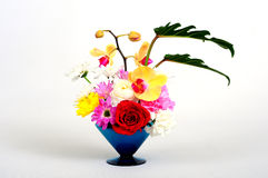 Chinaware with flora. Chinaware with flower white background stock image