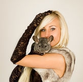 Chinchillas and a girl Stock Photography