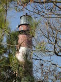 Chincoteague-/Assateagueleuchtturm lizenzfreie stockfotografie
