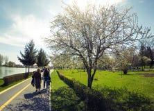 Chindia Park Targoviste Romania Stock Photography