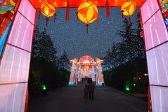 2014 Chinees de markt en de lantaarnfestival van de Nieuwjaartempel Royalty-vrije Stock Foto