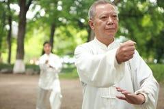 Chinees doet buiten taichi royalty-vrije stock foto