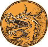Chinees Dragon Head Circle Etching Royalty-vrije Stock Foto's