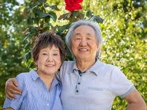 Chinees Hoger Volwassen Paar in openlucht stock afbeelding