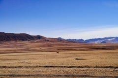 Chinees landschap royalty-vrije stock foto