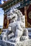 Chinees leeuwstandbeeld, Nara Peace Park, Canberra, Australië Royalty-vrije Stock Foto's