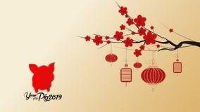 Chinees nieuw jaar 2019 met bloesembehang Jaar van het Varken van de Varkenshiëroglief royalty-vrije illustratie