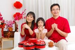Chinees Nieuwjaar royalty-vrije stock foto