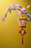 Chinees Nieuwjaar Royalty-vrije Stock Afbeeldingen