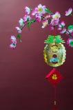 Chinees Nieuwjaar Royalty-vrije Stock Fotografie