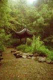 Chinees schoonheidsbeeld Royalty-vrije Stock Foto's