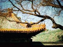 Chinees stijldak Stock Foto