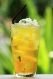 Chinees Thais kruidsap Stock Afbeeldingen