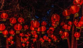 Chineese Lanterns at Gardens of Light, Montreal, Quebec, Canada. royalty free stock photo
