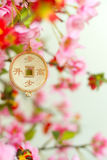 Chineese New Year Blossem and Coin Stock Photography