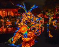 Chineese skulptural belysning på trädgårdar av ljus, Montreal, Queb fotografering för bildbyråer