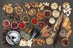 Chinese Acupuncture and Herbal Therapy Stock Images